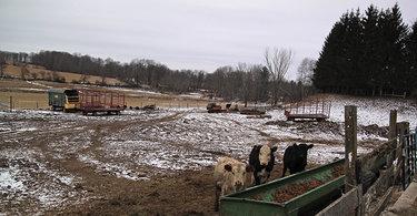 101-year-old farm
