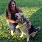 Amber Pitch, Adirondack 46er, Ariel, dogs