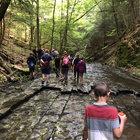 Exploring the stream bed at Switzkill Farm